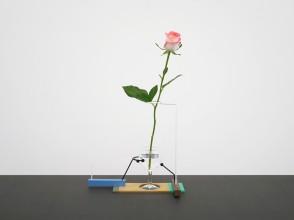 Daniel Weil, Walter vase, Anthologie Quartett